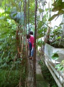 MuTiG_Ausflug Botanischer Garten